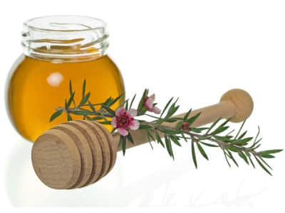 Le miel de manuka pour le soin des plaies